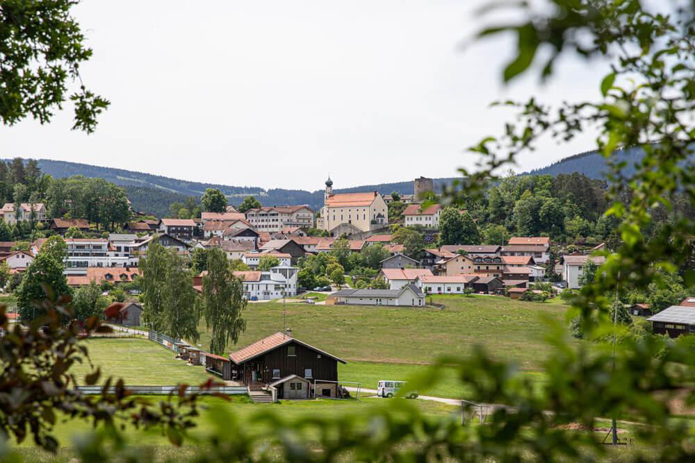 Obstgarten-2551.jpg