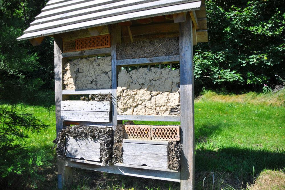 Angelika-Thalhammer-Proellersteig-Insektenhotel.jpg