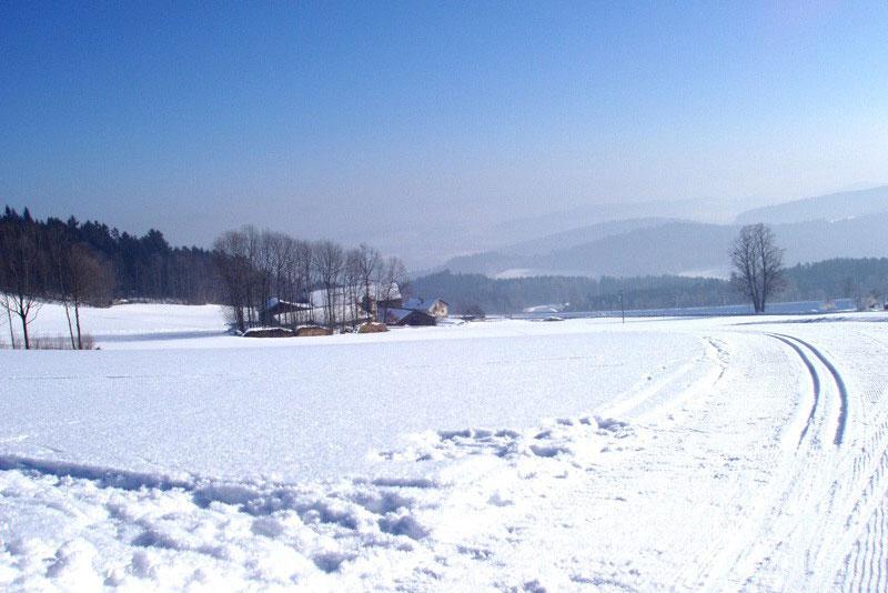 BgH_Winter2.jpg